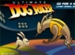 เกมส์หมาแข่งวิ่ง