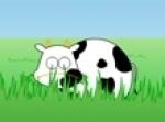 เกมส์เลี้ยงวัว