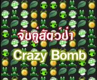 เกมส์จับคู่สัตว์ป่า Crazy bomb